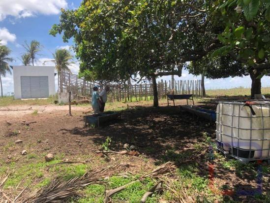 Fazenda com 3 dormitórios à venda, 530000 m² por R$ 1.400.000 - Centro - Curral de Cima/PB - Foto 19