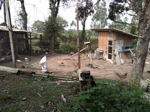 Vendo ou troco chácara em Quitandinha PR - Foto 6