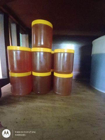 Vendo mel de abelha puro