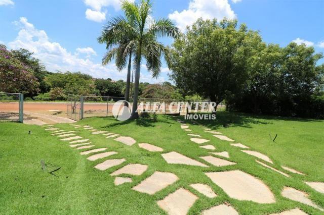 Chácara com 3 dormitórios à venda, 2017 m² por R$ 400.000 - RECANTO DAS AGUAS - Goianira/G - Foto 5