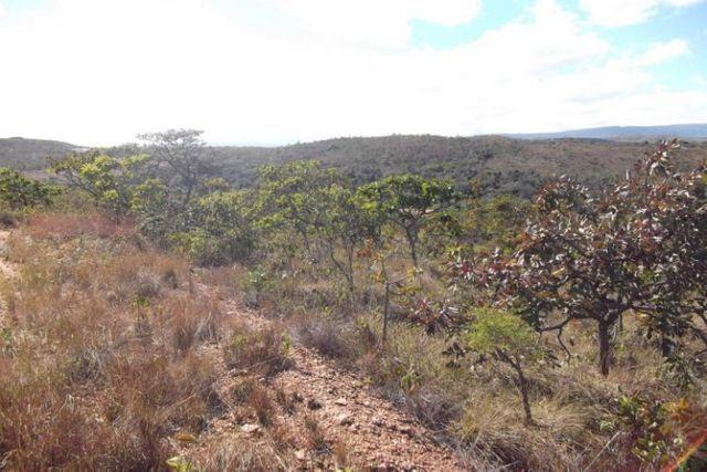 Lotes de 1.000 metros a 68 KM de BH (Financiamento Proprio) entra.7Mil * WhtsAPP - Foto 10