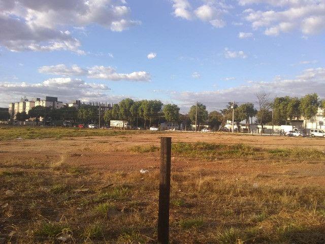 Alugo, Terreno Comercial - Bairro Goiá - Oportunidade - Foto 11