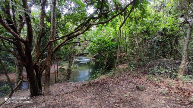 Área nas Margens do Rio Quente 12.643,39 - Foto 17