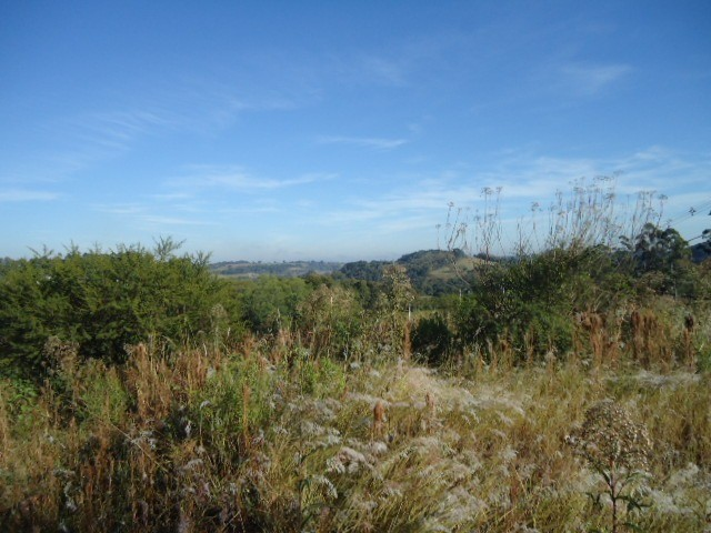 (TE2487) Terreno no Bairro Haller, Santo Ângelo, RS - Foto 6