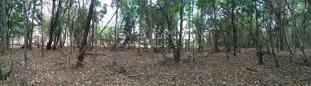 Chácara Aragoiânia, 14,65 alqueires, (71,71 hectares), - Foto 14