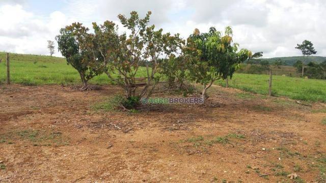 Sítio 19,5 ha em serra de são vicente - Foto 3