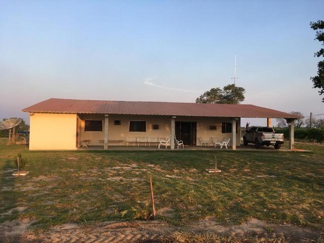 Fazenda 4400 hectares divisa com Goiás, a 500 km de Cuiabá e 500 km de Goiânia! PECUÁRIA! - Foto 10