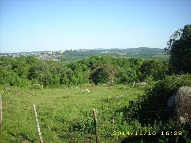 Rancho com 1 dormitório à venda por R$ 4.399.000,00 - Lomba do Pinheiro - Porto Alegre/RS - Foto 20