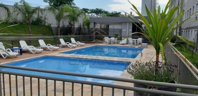 Apartamento para alugar com 2 dormitórios em Jardim veneto ii, Sertaozinho cod:L4376 - Foto 12