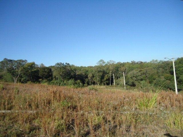 (TE2487) Terreno no Bairro Haller, Santo Ângelo, RS - Foto 8