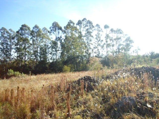 (TE2487) Terreno no Bairro Haller, Santo Ângelo, RS - Foto 11