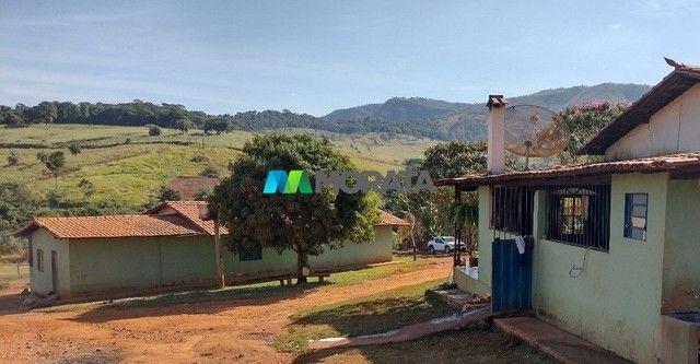 FAZENDA À VENDA - 75 HECTARES - ONÇA DE PITANGUI (MG) - Foto 5