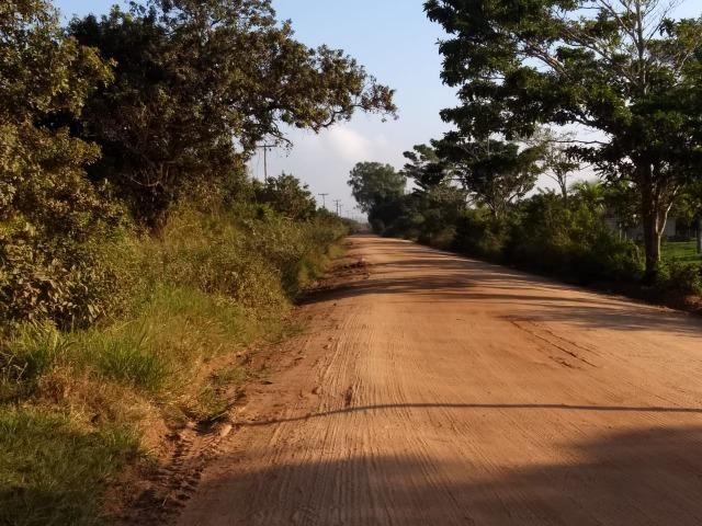 L - Terrenos localizados à 1km da Rodovia Amaral Peixoto!! - Foto 7