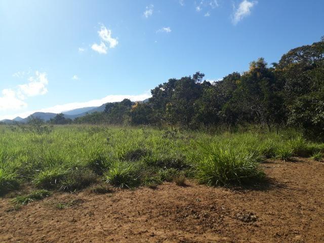 Fazenda 785 hectares ha 65 km de Jangada - Foto 13