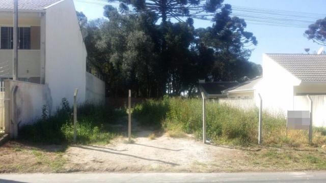 Terreno à venda, 459 m² por r$ 450.000 - boneca do iguaçu - são josé dos pinhais/pr - Foto 2