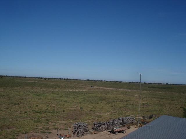 Fazenda 4400 hectares divisa com Goiás, a 500 km de Cuiabá e 500 km de Goiânia! PECUÁRIA! - Foto 4