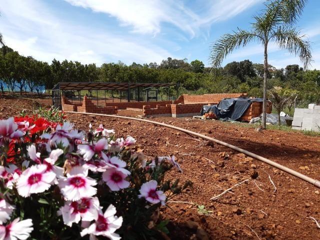 Excelente Chácara próximo a Flores da Cunha - Foto 9