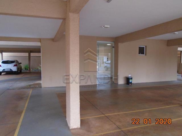 Apartamento para alugar com 2 dormitórios em Jardim eldorado, Sertaozinho cod:L8087 - Foto 5