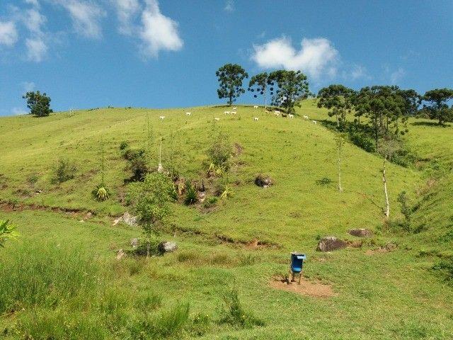 Sitio Maravilhoso e Rico em Água! Bairro Freires, Piranguçu/MG - Foto 4
