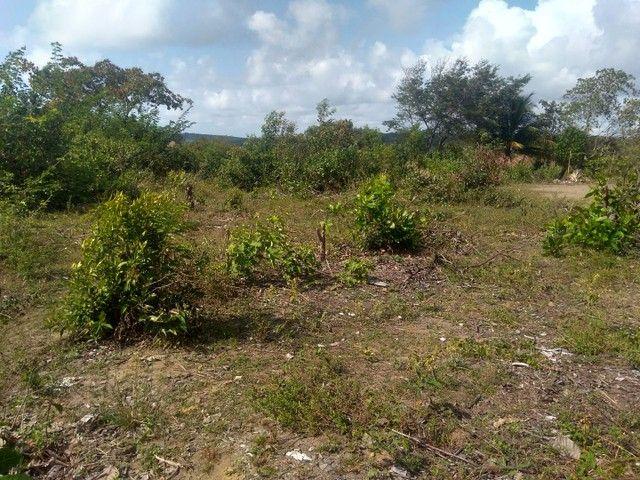 Vendo terreno em Itamaracá