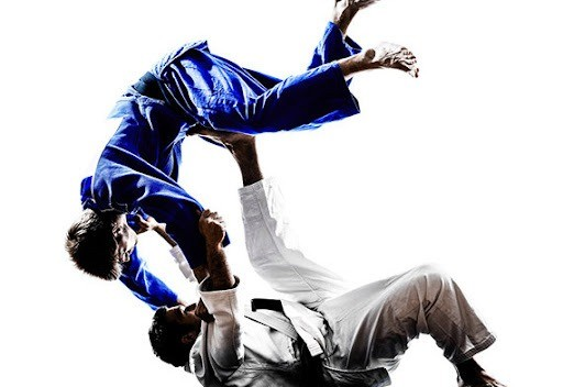 Aulas particulares de Jiu-Jitsu - Foto 2