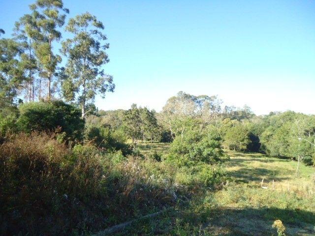 (TE2487) Terreno no Bairro Haller, Santo Ângelo, RS - Foto 5