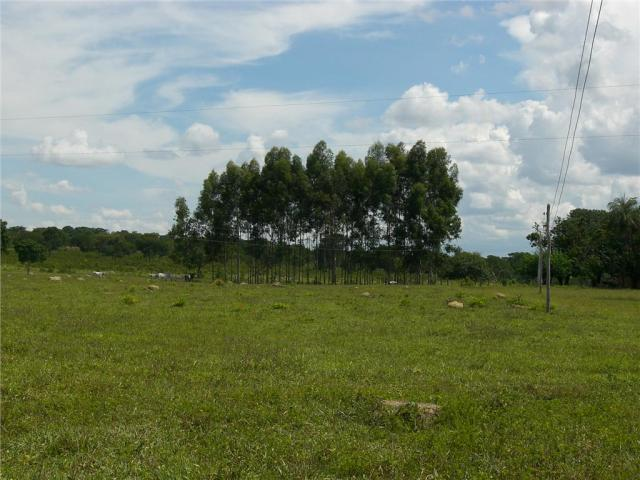 Fazenda rural à venda, Rural, São Romão.