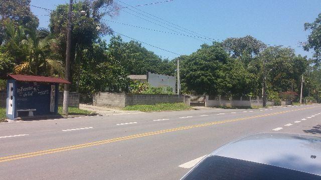 Terreno Ervino (Gamboa) frente pro asfalto