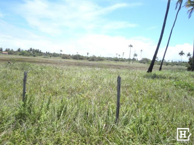 Terreno à venda - mosqueiro - Foto 7