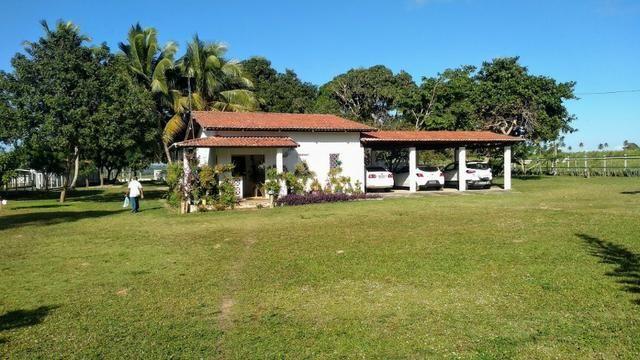 Fazenda em Monte Alegre - Com 80,52 Ha -Com Açude - Foto 2