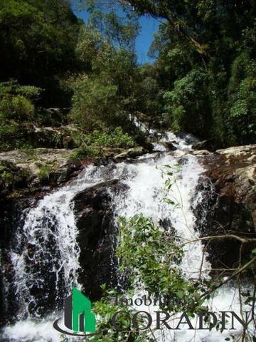 Terreno em São Jose dos Pinhais - Foto 2