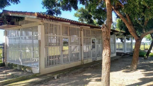 Fazenda em Monte Alegre - Com 80,52 Ha -Com Açude - Foto 7