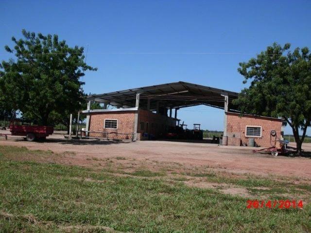 Fazenda 4400 hectares divisa com Goiás, a 500 km de Cuiabá e 500 km de Goiânia! PECUÁRIA! - Foto 7