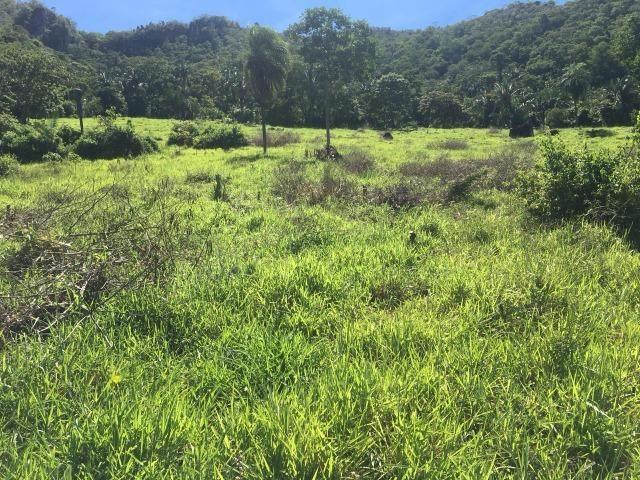 Fazenda a 4 km da BR 364 antes da Serra de São Vicente Prox do posto chapadão - Foto 10
