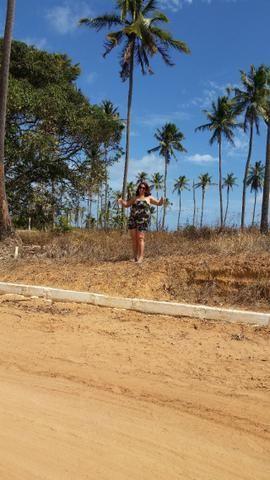 Terreno em Paripueira - Condomínio Colinas do sonho verde - Foto 6