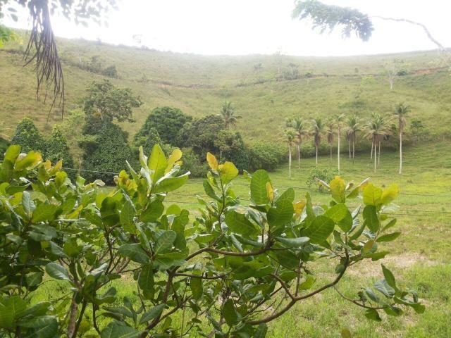 Propriedade rural com 140 HEC