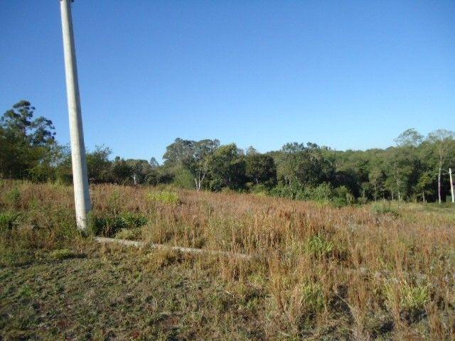 (TE2487) Terreno no Bairro Haller, Santo Ângelo, RS - Foto 9