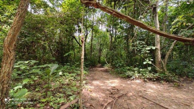 Área nas Margens do Rio Quente 12.643,39 - Foto 19