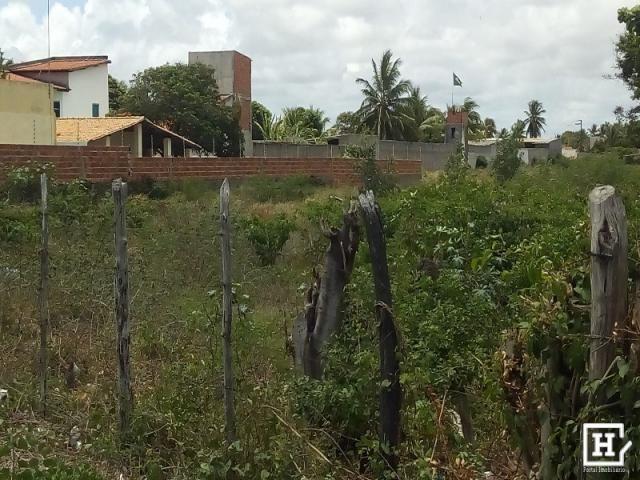 Terreno à venda - mosqueiro - Foto 4