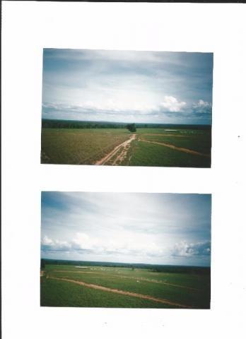 199 - Fazenda