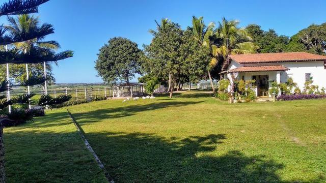 Fazenda em Monte Alegre - Com 80,52 Ha -Com Açude - Foto 5