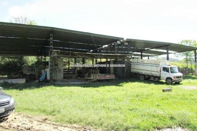 Fabio Paes Imóveis - Fazenda 28 alq - luxo - Oportunidade!!! - Foto 7
