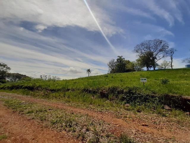 Excelente Chácara próximo a Flores da Cunha - Foto 2