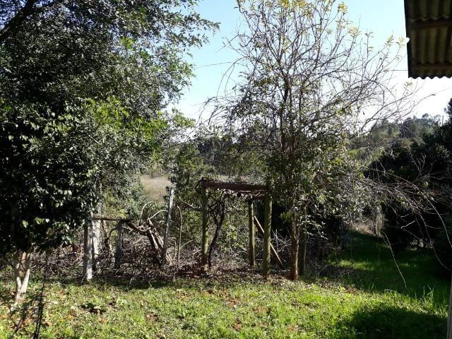 Chácara em Contenda -São José dos `Pinhais - Foto 5