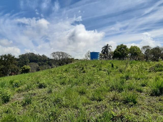 Excelente Chácara próximo a Flores da Cunha - Foto 12