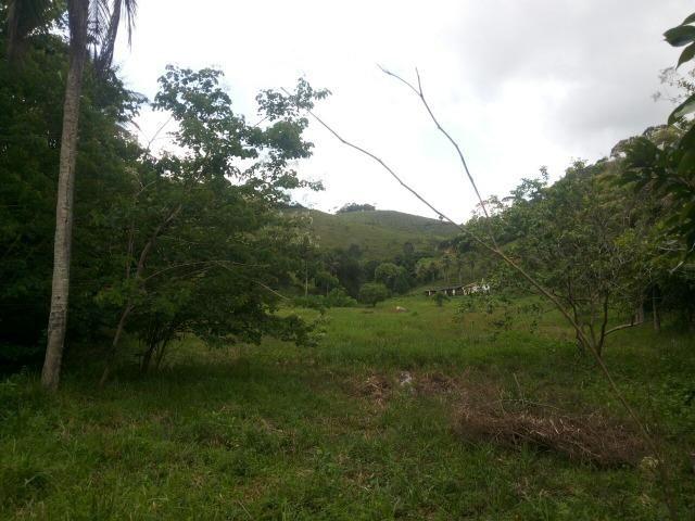 Propriedade rural com 140 HEC - Foto 3