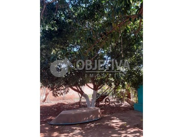 Terreno à venda em Shopping park, Uberlandia cod:802356 - Foto 8