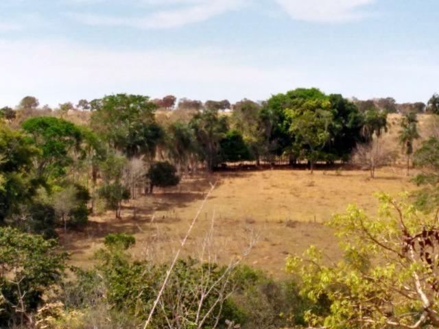 Chácara Aragoiânia, 14,65 alqueires, (71,71 hectares), - Foto 13