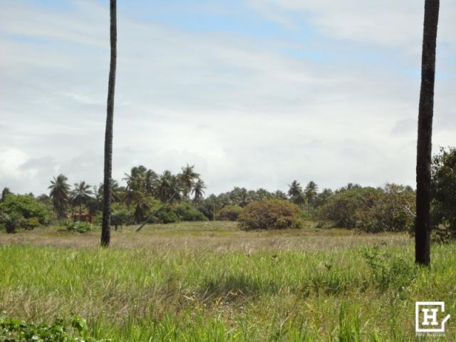 Terreno à venda - mosqueiro - Foto 9