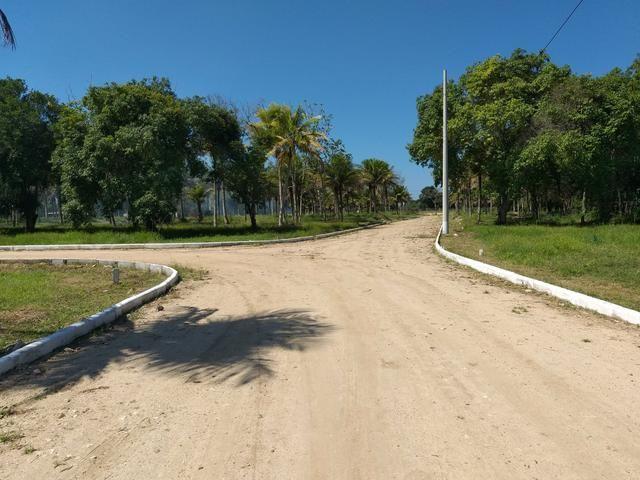 Cód 33 Terreno em Ótima Localização!!!!! - Foto 2